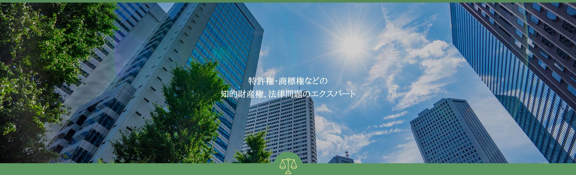 特許権・商標権などの                 知的財産権、法律問題のエクスパート